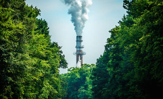 carbon emissions and economic growth