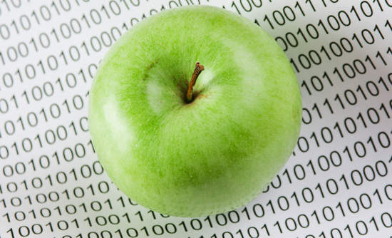 Big data and food security