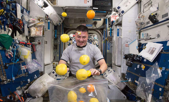 NASA astronaut Kjell Lindgren corrals the supply of fresh fruit that arrived on the Kounotori 5 H-II Transfer Vehicle.
