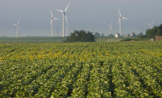 Iowa Wind Energy