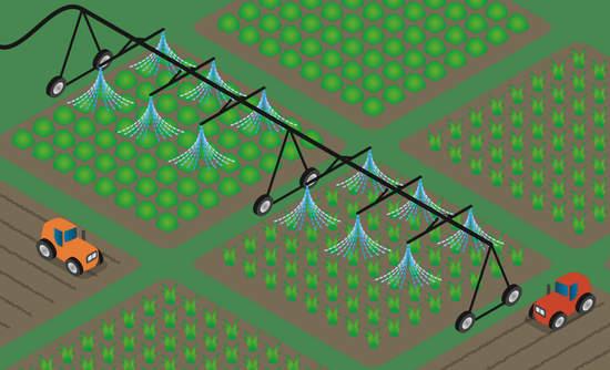 Illustration of farm irrigation