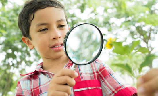 children environmental education climate change