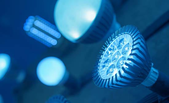 A variety of LED bulbs