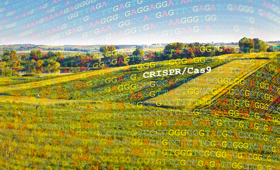 farm field with dna over it
