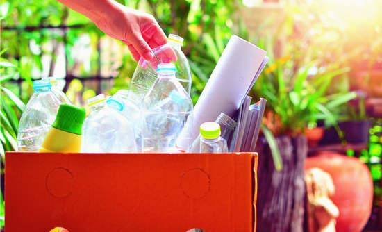 Plastic bottle in box