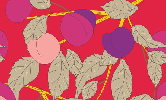 Plum tree illustration