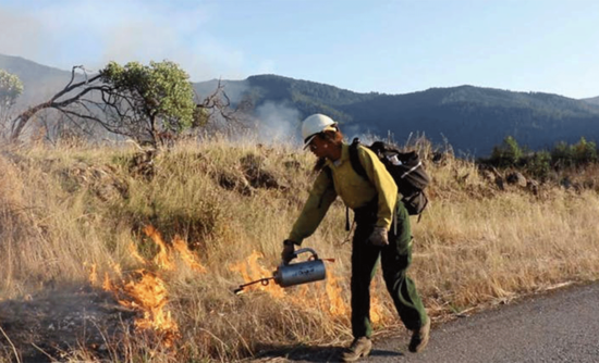 Aja Conrad, of the Karuk Tribe, lights prescribed fire in Orleans, California.