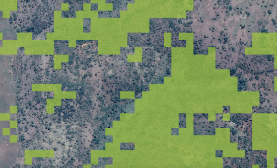 forests technology mapping