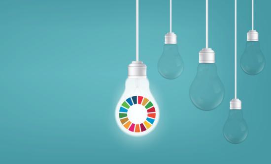 SDG lightbulb