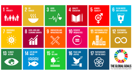 Graphic of all 17 SDGs