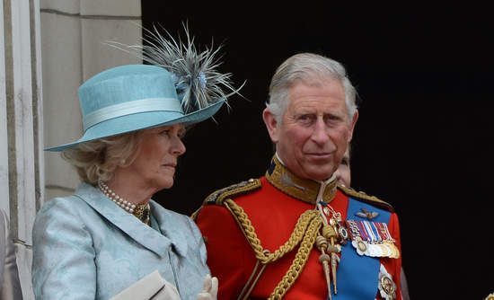 Prince Charles Accounting for Sustainability