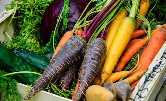 sustainable agriculture, organic farming, impact investing