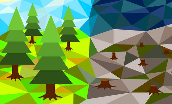Seeing the forest for the trees: Widening the lens for real returns
