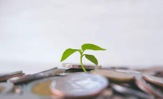 green bond development