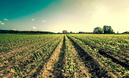 carbon farming climate change solutions