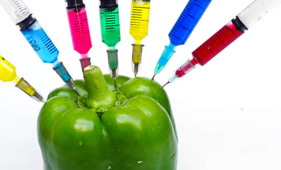 GMOs sustainble business public policy