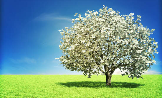 money tree, natural capital, financial services sector sustainability