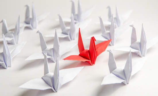 origami leadership climate change