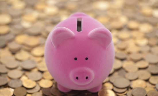 piggy bank, interest savings, business carbon footprint