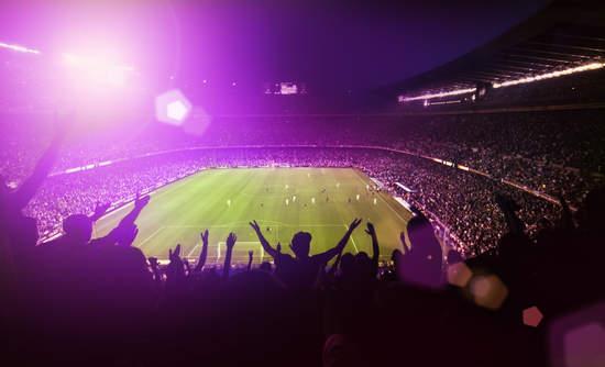 sports stadium fans