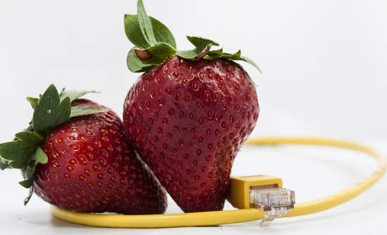 strawberries food technology big data