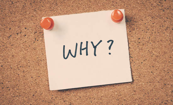 why? business purpose and sustainability
