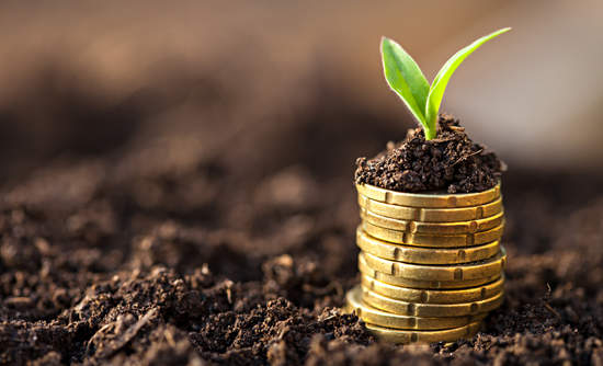 Soil growing from investments