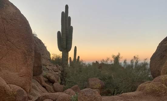 Sonoran Desert, GreenBiz 20