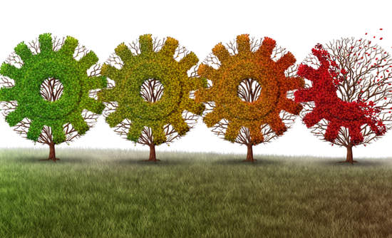 Illustration of trees shaped like gears