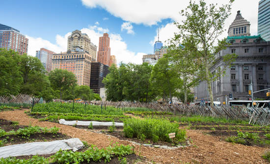 Urban Farms Now Produce 15 Of The Worlds Food Greenbiz
