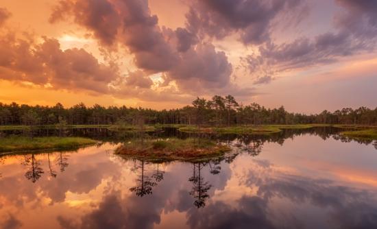 Ecological wetlands at sunset