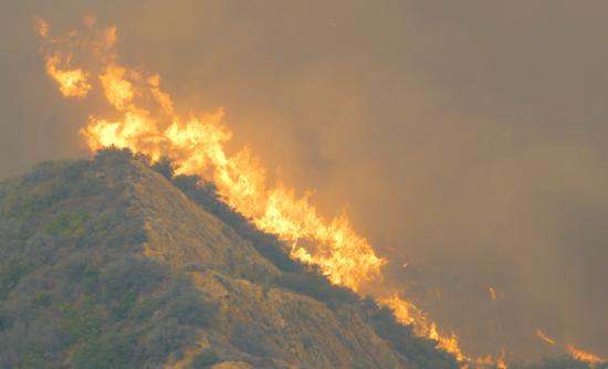 Wildfire in California hills