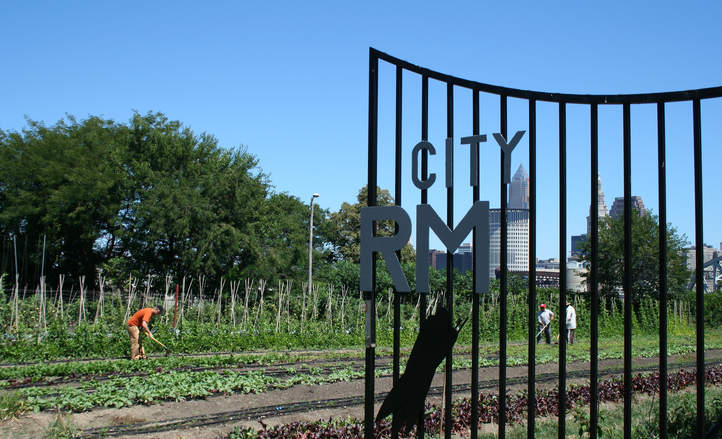 How urban agriculture could improve food security in U.S. cities