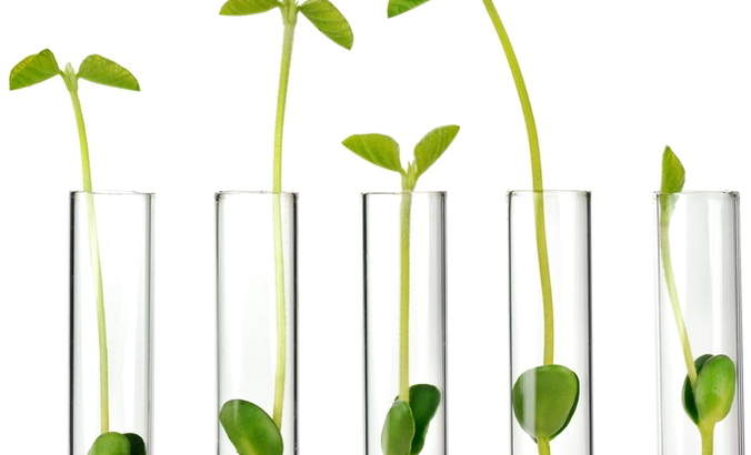 Why green chemistry is a major driver of product innovation featured image
