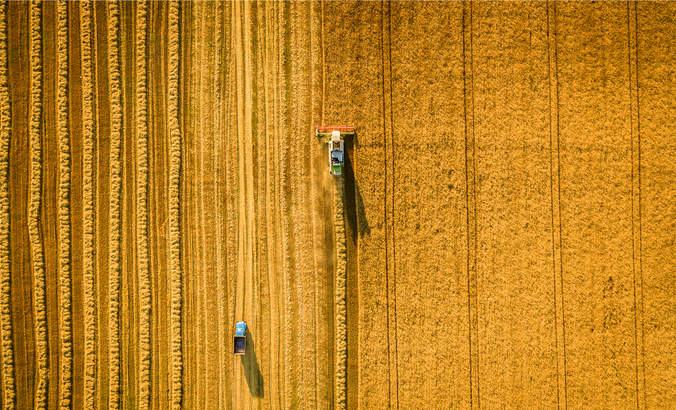 Why food production doesn't need to double by 2050 featured image