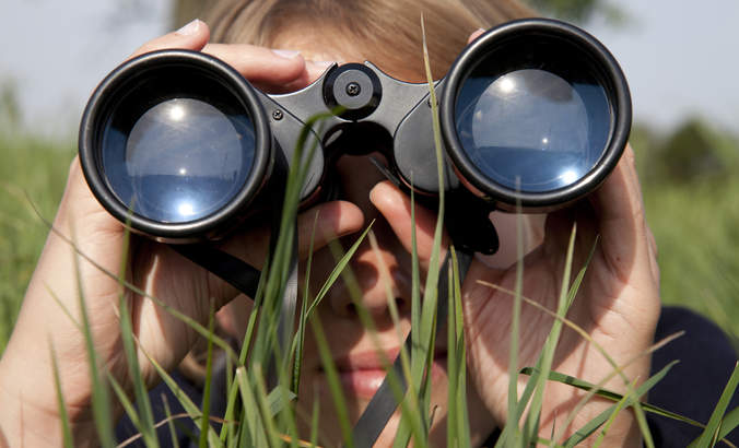 How to spot the best opportunities for action these next two years featured image