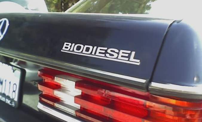 How 3 biodiesel companies defy the odds in a challenging industry featured image