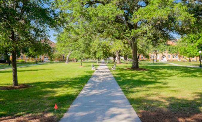 The Future MBA, week 9: Green spaces and green courses featured image