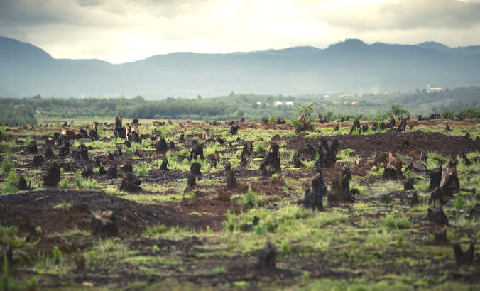 Why your company's sustainability deadlines matter featured image
