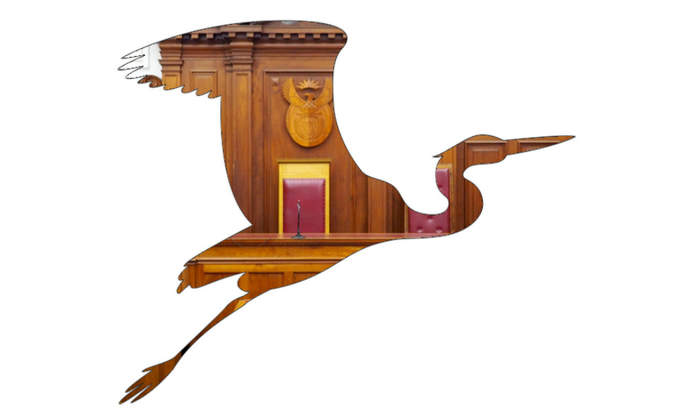 A courtroom photograph appears inside the shape of a blue heron.