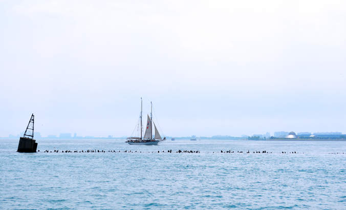 Wind energy sets sail on the Great Lakes featured image