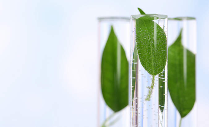 5 strategies to accelerate green chemistry featured image