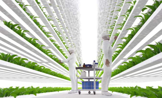 How indoor ag is growing a resilient food revolution featured image