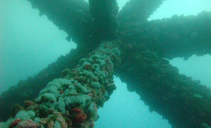 oil rig to reef
