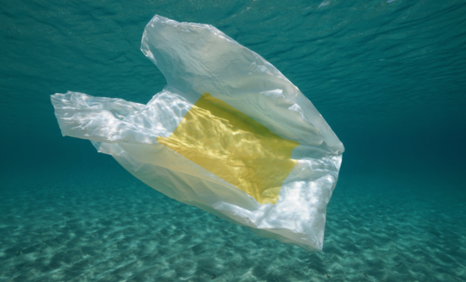 Plastic bag polluting the Mediterranean