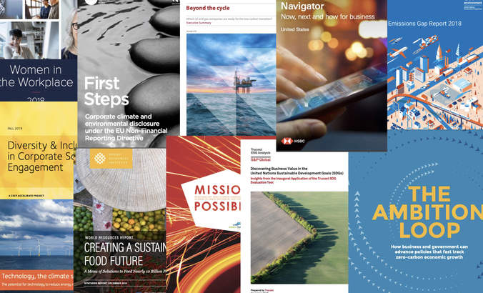 Report Report: Diversity, Disclosure, CDP and the SDGs featured image