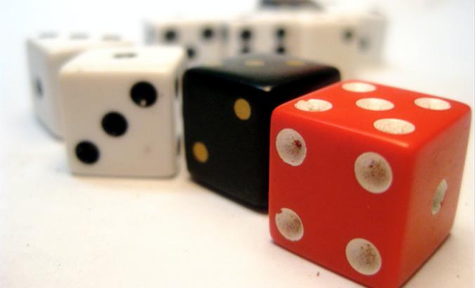 dice climate risk model