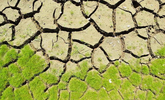 Surprising new study shows deadly feedback loop of soil warming featured image