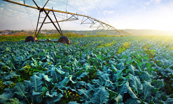 Five changes agri-businesses need to make if they want to survive featured image