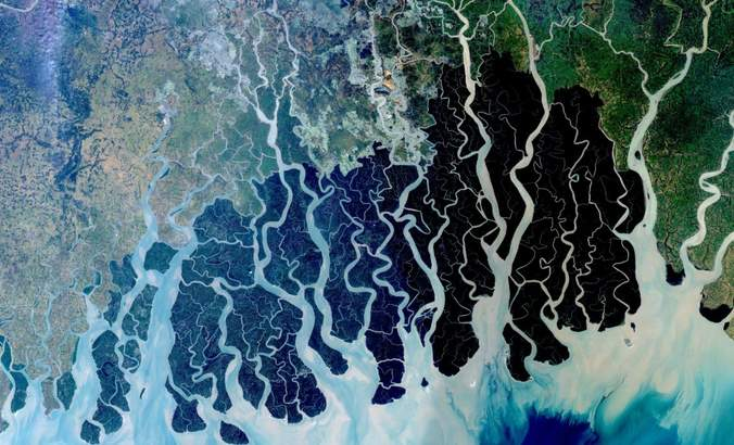 How satellite imagery is transforming conservation science featured image